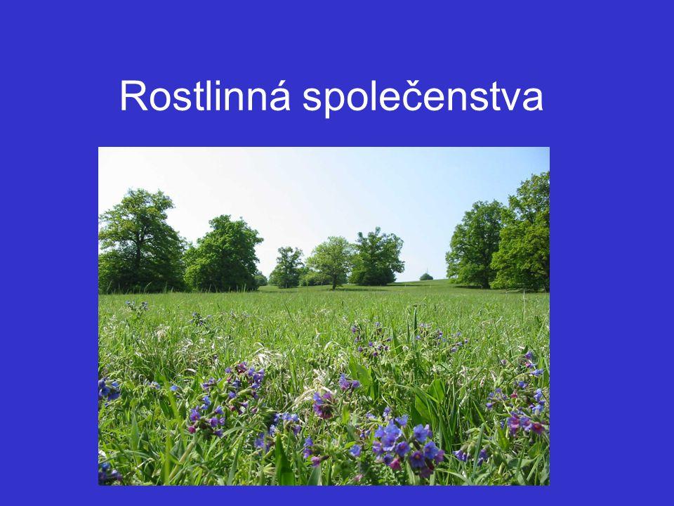 Chytrý M., Kučera T.a Kočí M. (2001) Katalog biotopu Ceské republiky.