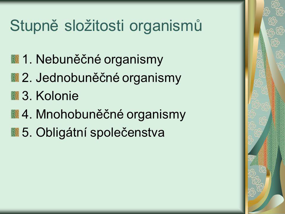 Stupně složitosti organismů 1.Nebuněčné organismy 2.