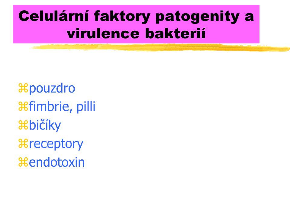 Celulární faktory patogenity a virulence bakterií zpouzdro zfimbrie, pilli zbičíky zreceptory zendotoxin
