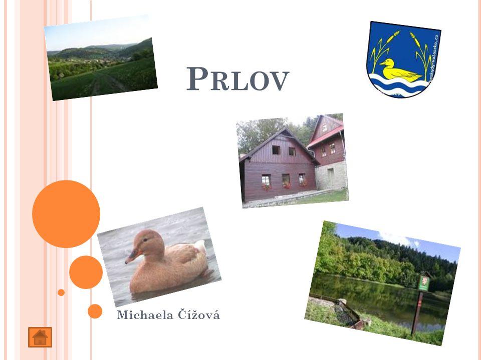 P RLOV Michaela Čížová