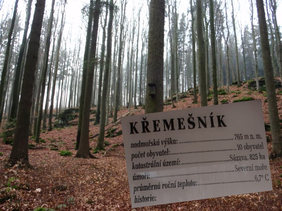 PŘÍRODNÍ REZERVACE KŘEMEŠNÍK Přírodní rezervace Křemešník byla vyhlášena roku 1985 Zavede nás do malebné krajiny Českomoravské vrchoviny 1,5 km severozápadně od obce Sázava 86 % plochy zaujímají porosty starší 100 let Předmětem ochrany jsou přirozená lesní společenstva Je nutné do společenstva zasahovat, jinak by zde převládla smrková monokultura