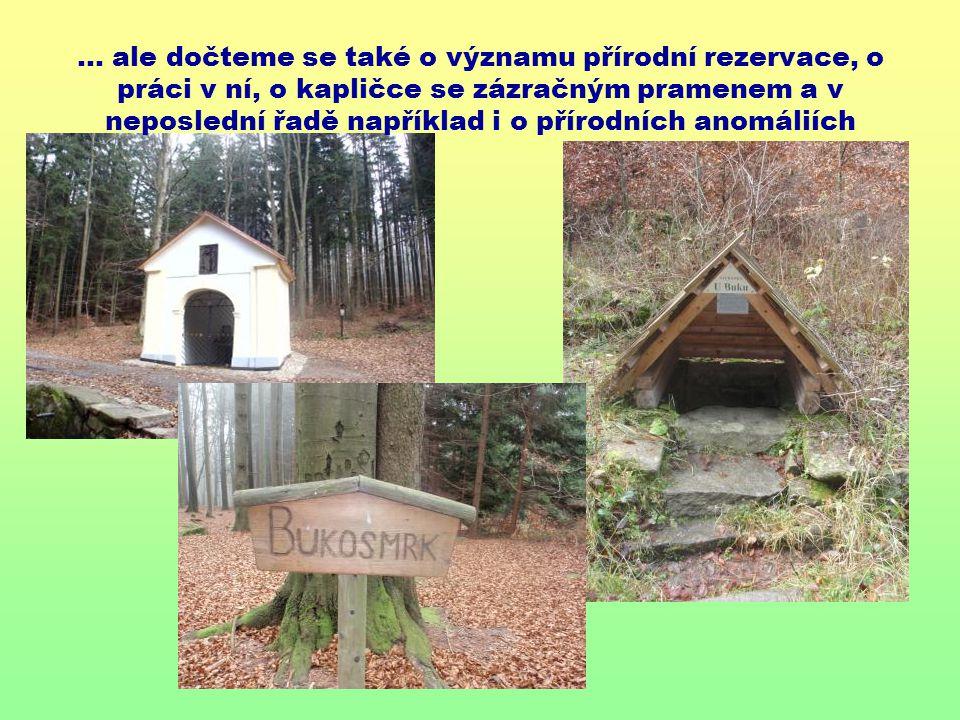 … ale dočteme se také o významu přírodní rezervace, o práci v ní, o kapličce se zázračným pramenem a v neposlední řadě například i o přírodních anomáliích