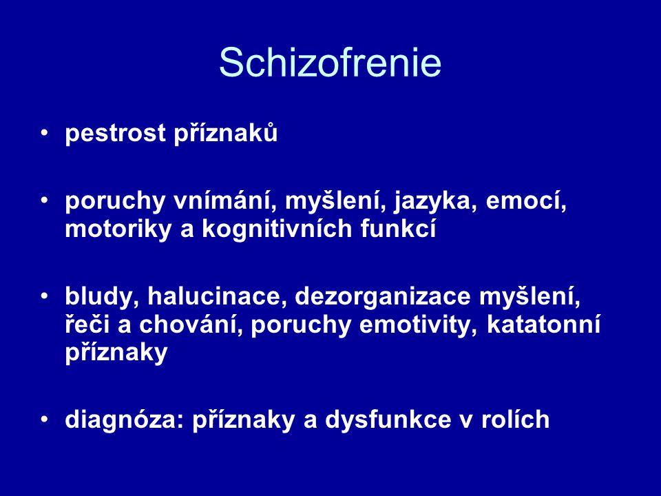 Schizofrenie pestrost příznaků poruchy vnímání, myšlení, jazyka, emocí, motoriky a kognitivních funkcí bludy, halucinace, dezorganizace myšlení, řeči