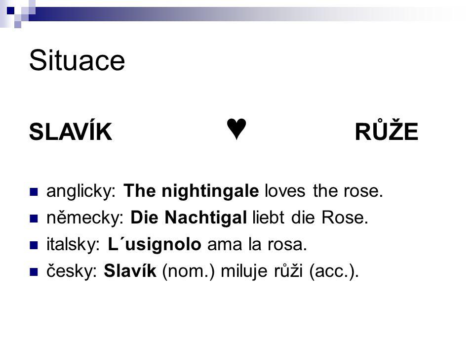 Situace SLAVÍK ♥ RŮŽE anglicky: The nightingale loves the rose. německy: Die Nachtigal liebt die Rose. italsky: L´usignolo ama la rosa. česky: Slavík