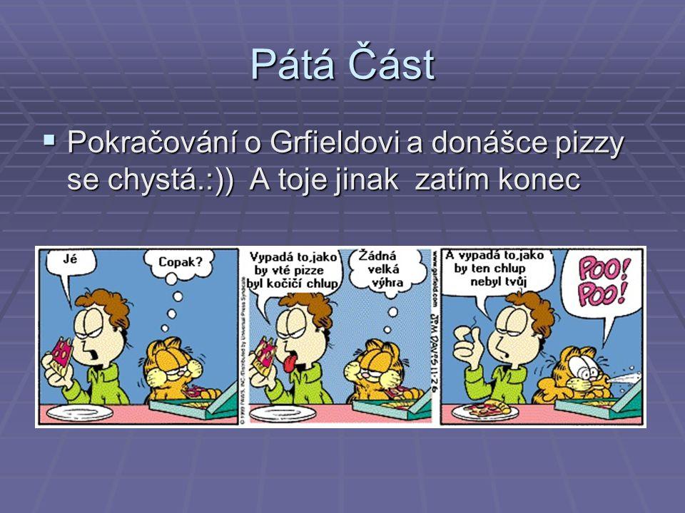 Pátá Část  Pokračování o Grfieldovi a donášce pizzy se chystá.:)) A toje jinak zatím konec