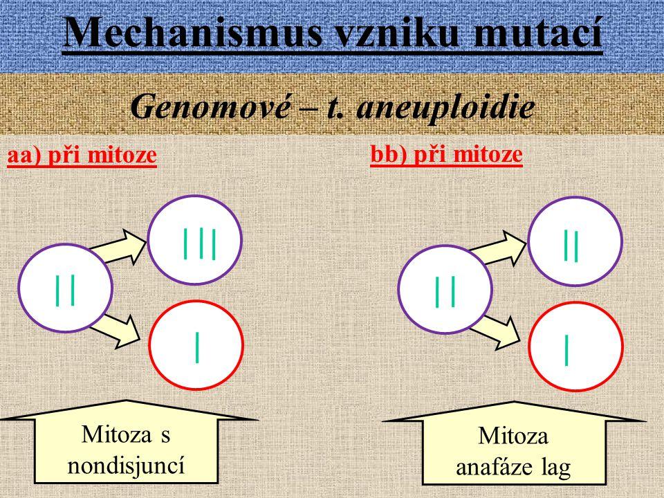 Mechanismus vzniku mutací Genomové – t. aneuploidie aa) při mitoze Mitoza s nondisjuncí Mitoza anafáze lag bb) při mitoze