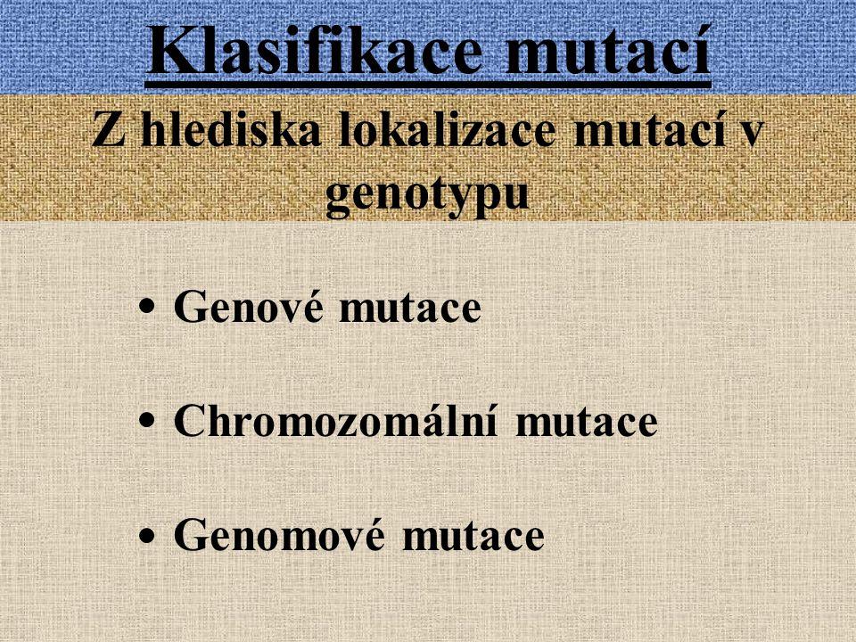 Klasifikace mutací Z hlediska lokalizace mutací v genotypu Genové mutace Chromozomální mutace Genomové mutace