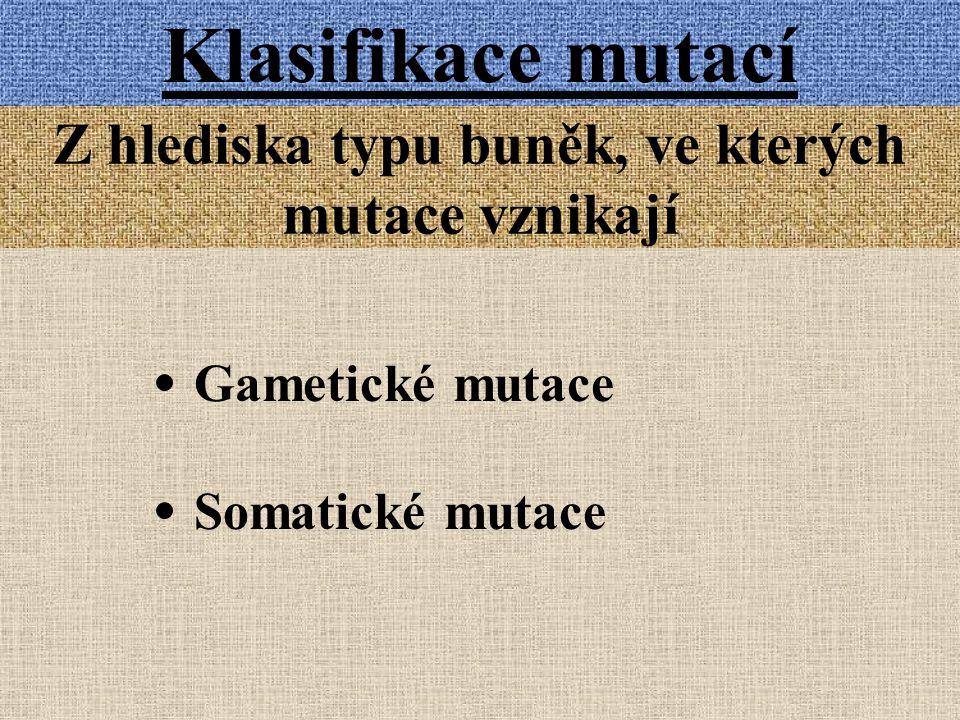 Klasifikace mutací Z hlediska typu buněk, ve kterých mutace vznikají Gametické mutace Somatické mutace
