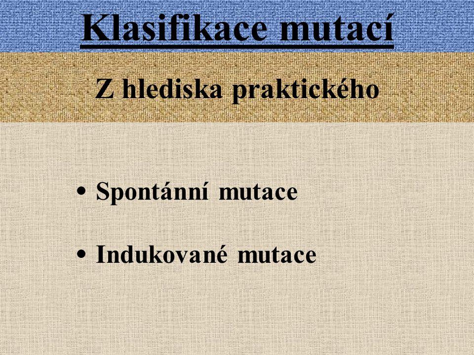 Klasifikace mutací Z hlediska praktického Spontánní mutace Indukované mutace