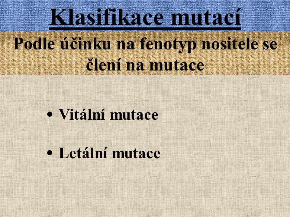 Klasifikace mutací Podle účinku na fenotyp nositele se člení na mutace Vitální mutace Letální mutace