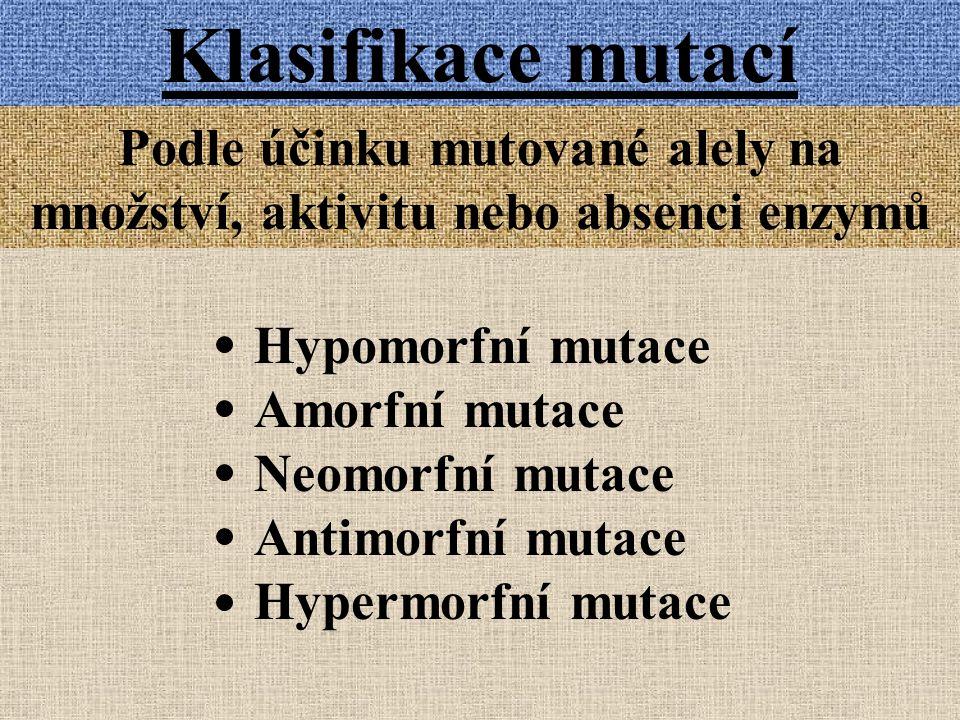Klasifikace mutací Podle účinku mutované alely na množství, aktivitu nebo absenci enzymů Hypomorfní mutace Amorfní mutace Neomorfní mutace Antimorfní mutace Hypermorfní mutace