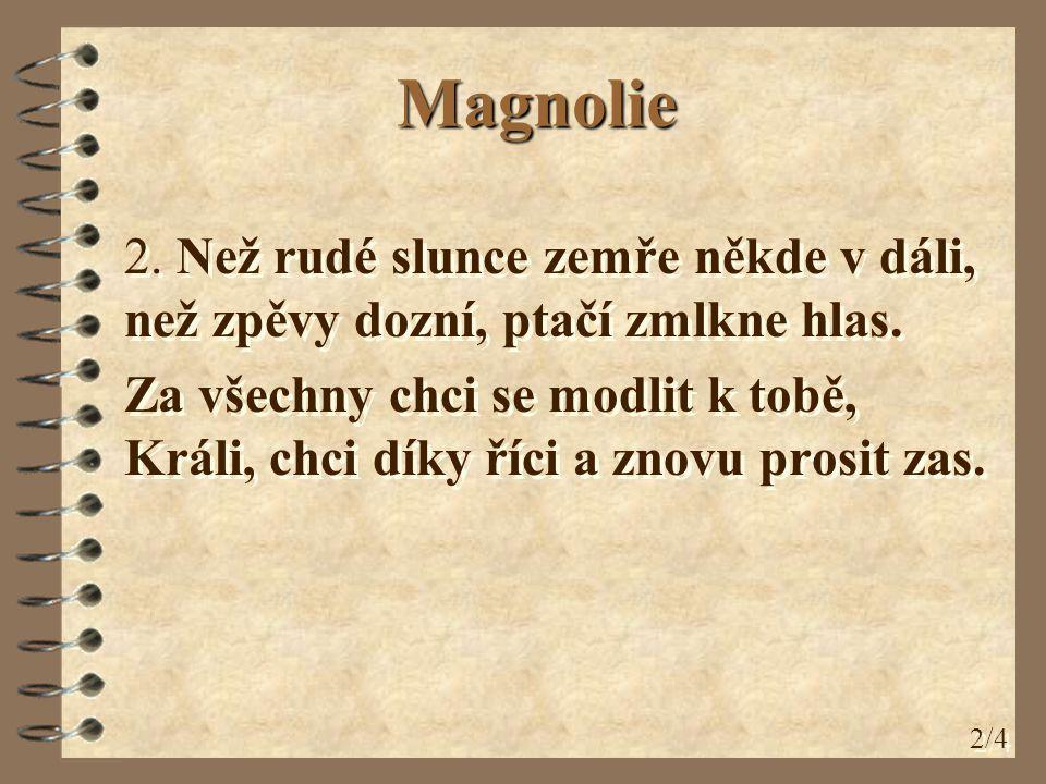 Magnolie 3.Za všechny, kteří na Tě zapomněli, za bloudící, za smutné v klekání.