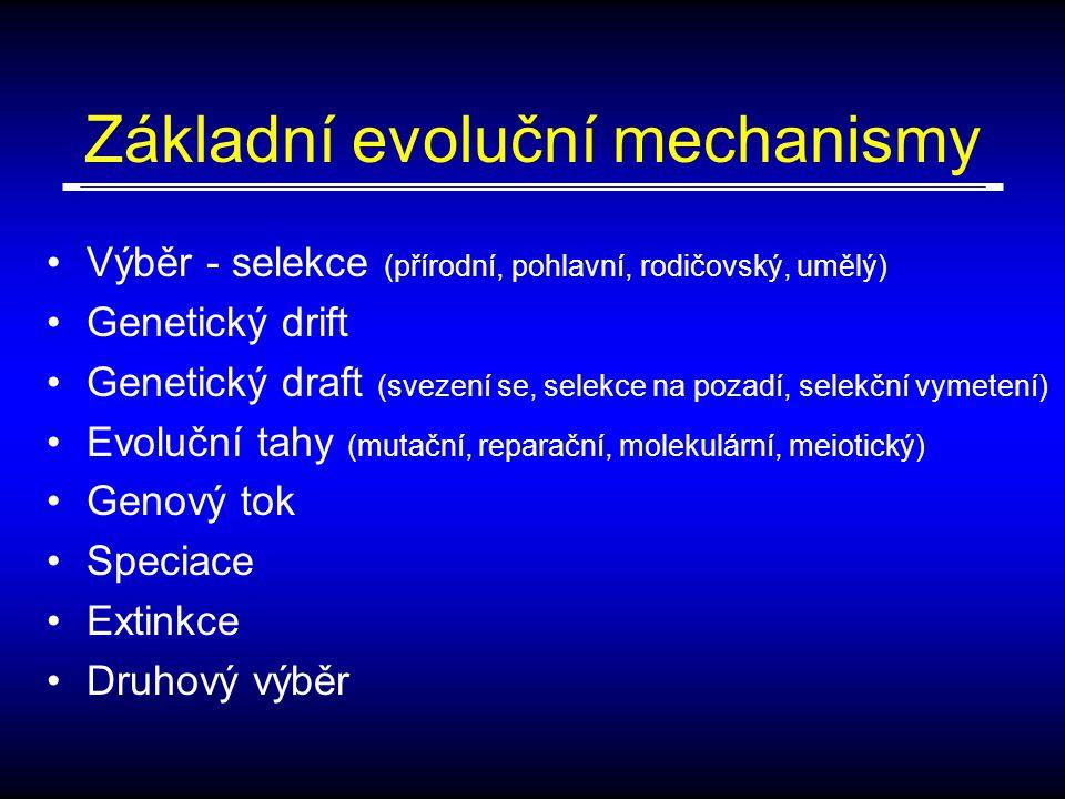 Základní evoluční mechanismy Výběr - selekce (přírodní, pohlavní, rodičovský, umělý) Genetický drift Genetický draft (svezení se, selekce na pozadí, selekční vymetení) Evoluční tahy (mutační, reparační, molekulární, meiotický) Genový tok Speciace Extinkce Druhový výběr