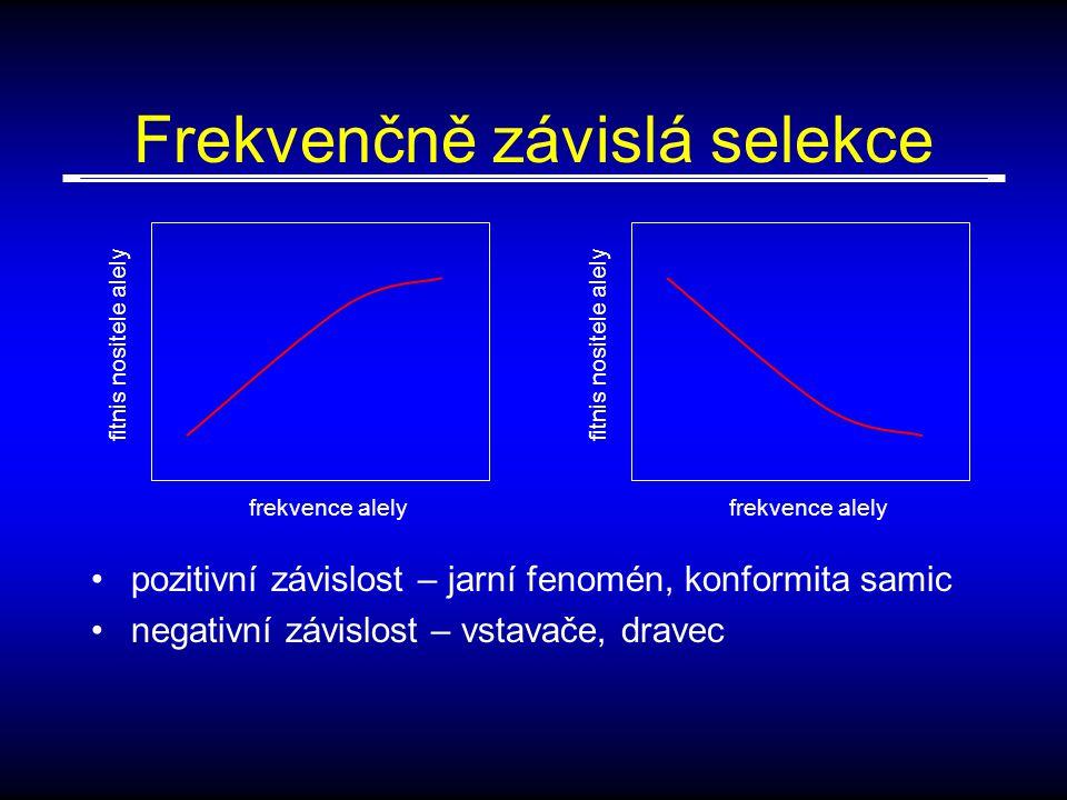 Frekvenčně závislá selekce pozitivní závislost – jarní fenomén, konformita samic negativní závislost – vstavače, dravec frekvence alely fitnis nositele alely frekvence alely fitnis nositele alely