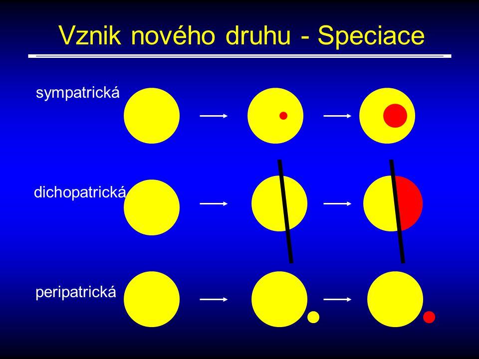 sympatrická dichopatrická peripatrická Vznik nového druhu - Speciace
