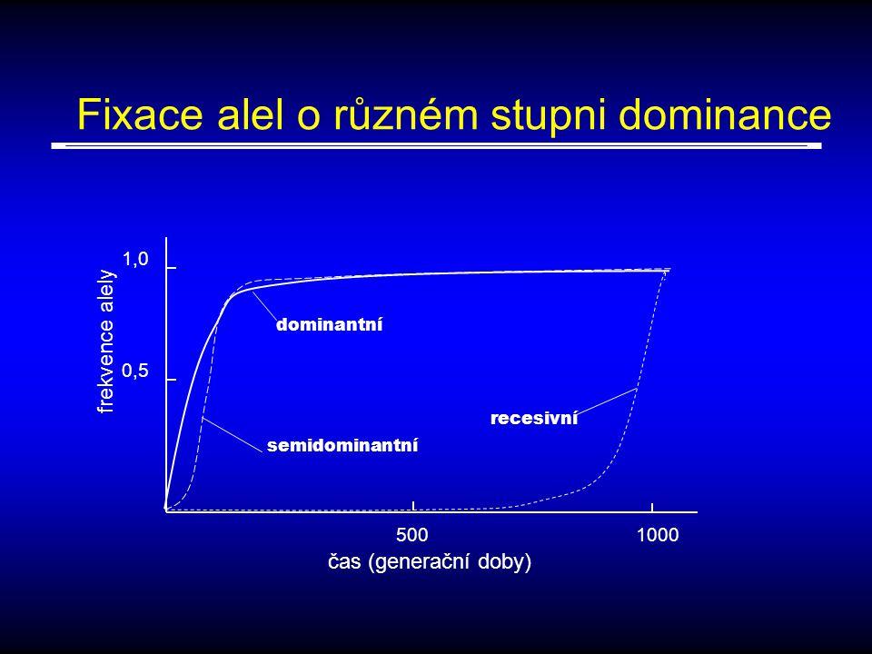 Fixace alel o různém stupni dominance recesivní dominantní semidominantní 0,5 1,0 5001000 čas (generační doby) frekvence alely