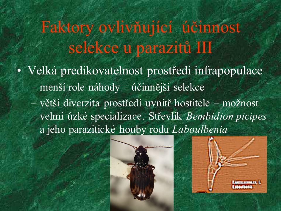 Faktory ovlivňující účinnost selekce u parazitů IV Princip večeře nebo život
