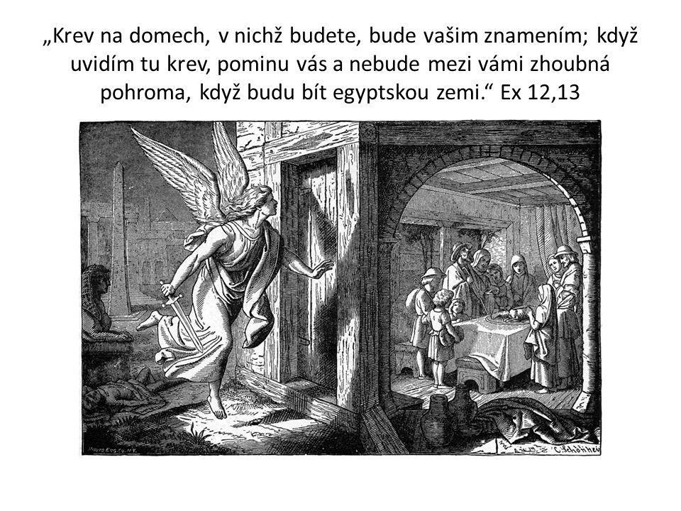 """""""Krev na domech, v nichž budete, bude vašim znamením; když uvidím tu krev, pominu vás a nebude mezi vámi zhoubná pohroma, když budu bít egyptskou zemi. Ex 12,13"""