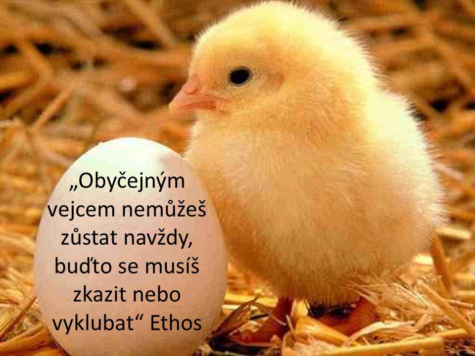 """""""Obyčejným vejcem nemůžeš zůstat navždy, buďto se musíš zkazit nebo vyklubat"""" Ethos"""