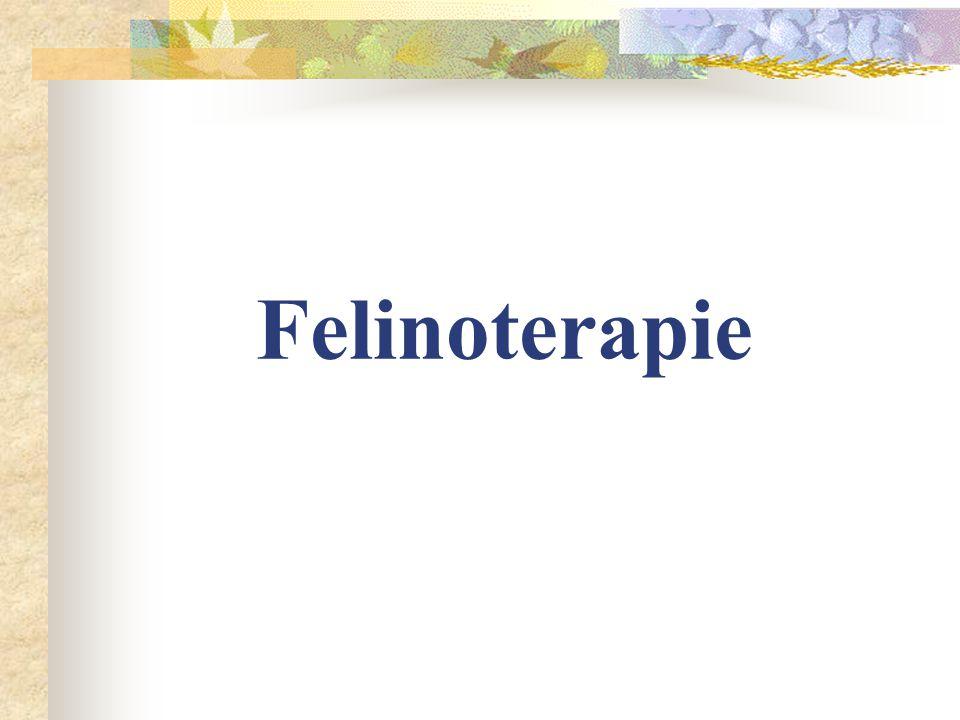 -v jakém typu nemocnice a na jakém oddělení felinoterapii využít - proč a u jakých pacientů a s jakou diagnózou - jak felinoterapii použít v praxi a s jakou povahou koček - výsledky a použití felinoterapie