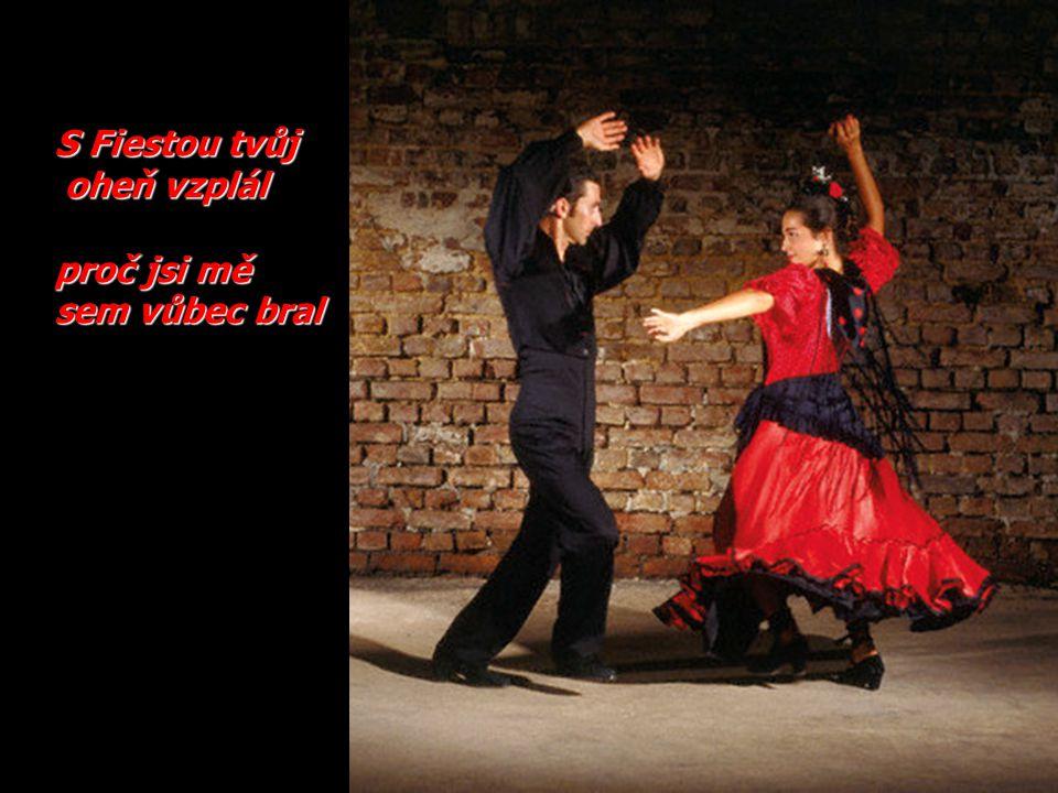 Flamencemsesproměnil, ha ve svůj vlastní stín.
