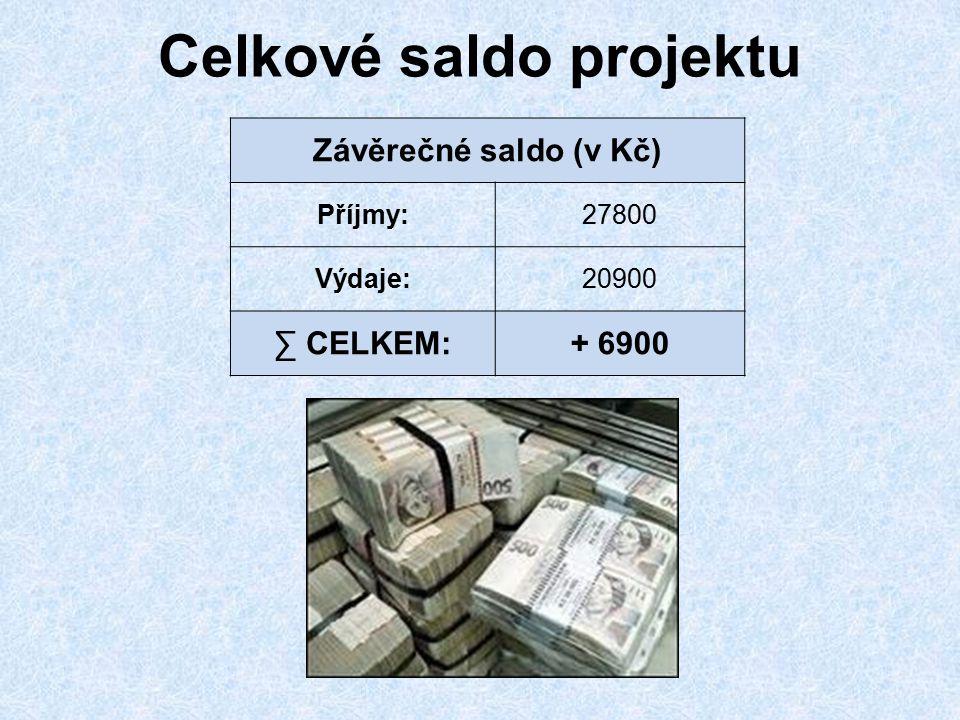 Celkové saldo projektu Závěrečné saldo (v Kč) Příjmy:27800 Výdaje:20900 ∑ CELKEM:+ 6900
