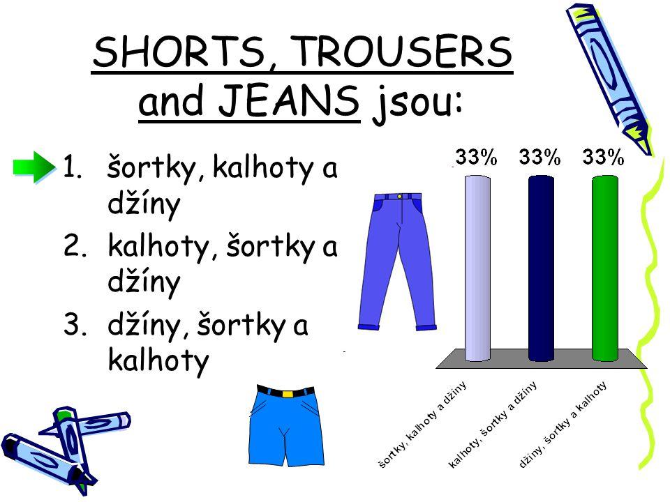 CLOTHES znamená v překladu: 1.oblečení 2.občerstvení 3.počasí