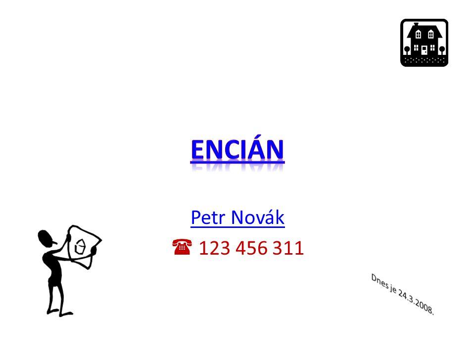 Petr Novák  123 456 311