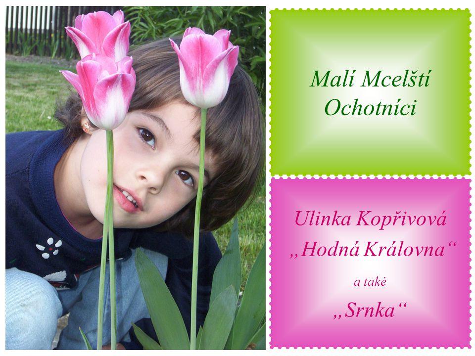 """Malí Mcelští Ochotníci Michalka Šťastná """"VI. Trpaslík"""