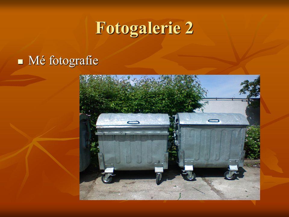 Fotogalerie 3 Má druhá fotografie Má druhá fotografie