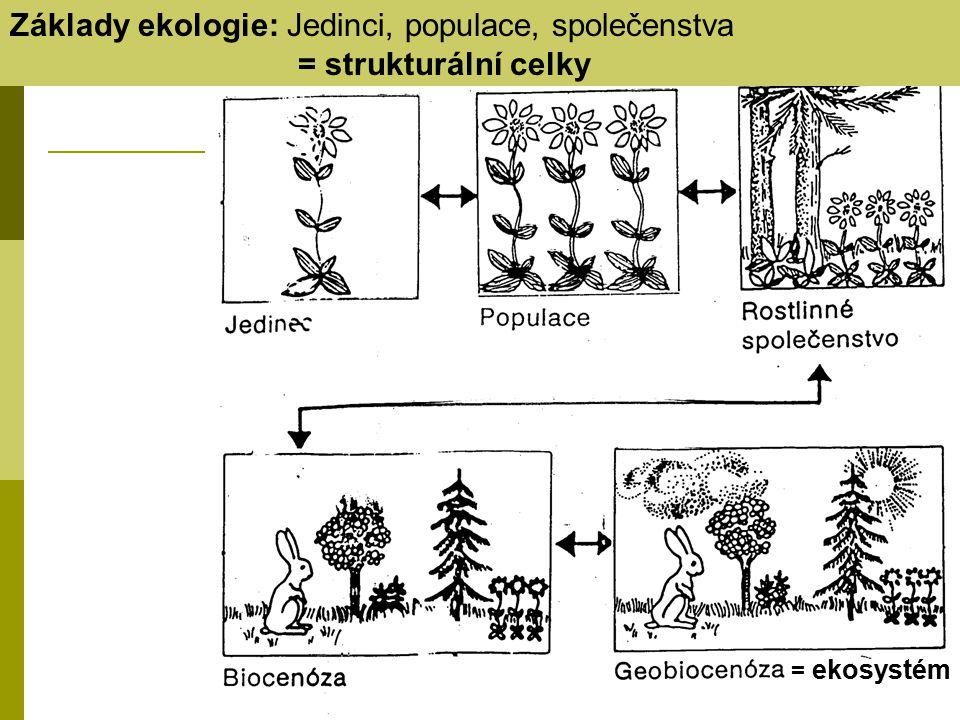 = ekosystém Základy ekologie: Jedinci, populace, společenstva = strukturální celky