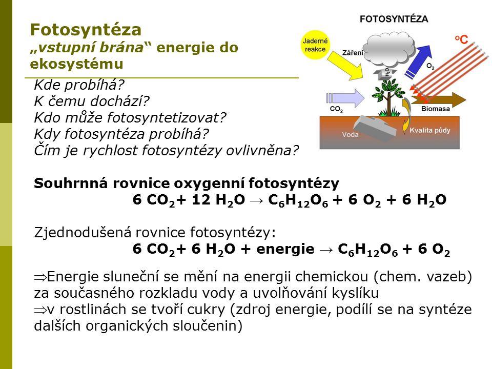 Kde probíhá? K čemu dochází? Kdo může fotosyntetizovat? Kdy fotosyntéza probíhá? Čím je rychlost fotosyntézy ovlivněna? Souhrnná rovnice oxygenní foto