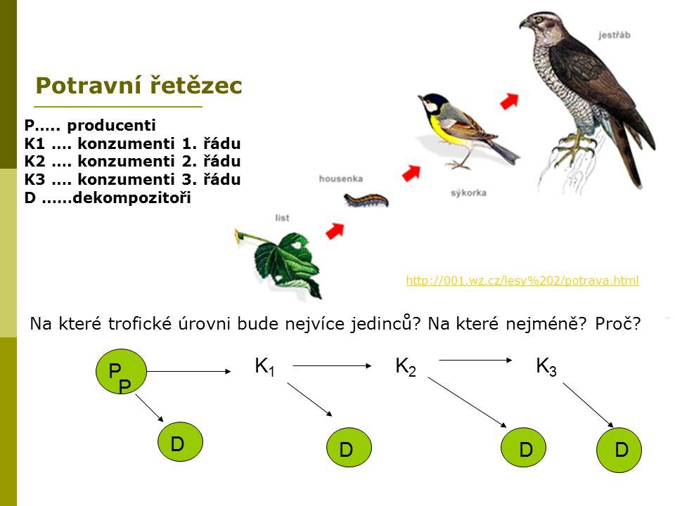 http://001.wz.cz/lesy%202/potrava.html P P K1K1 K2K2 D DD K3K3 D P….. producenti K1 …. konzumenti 1. řádu K2 …. konzumenti 2. řádu K3 …. konzumenti 3.