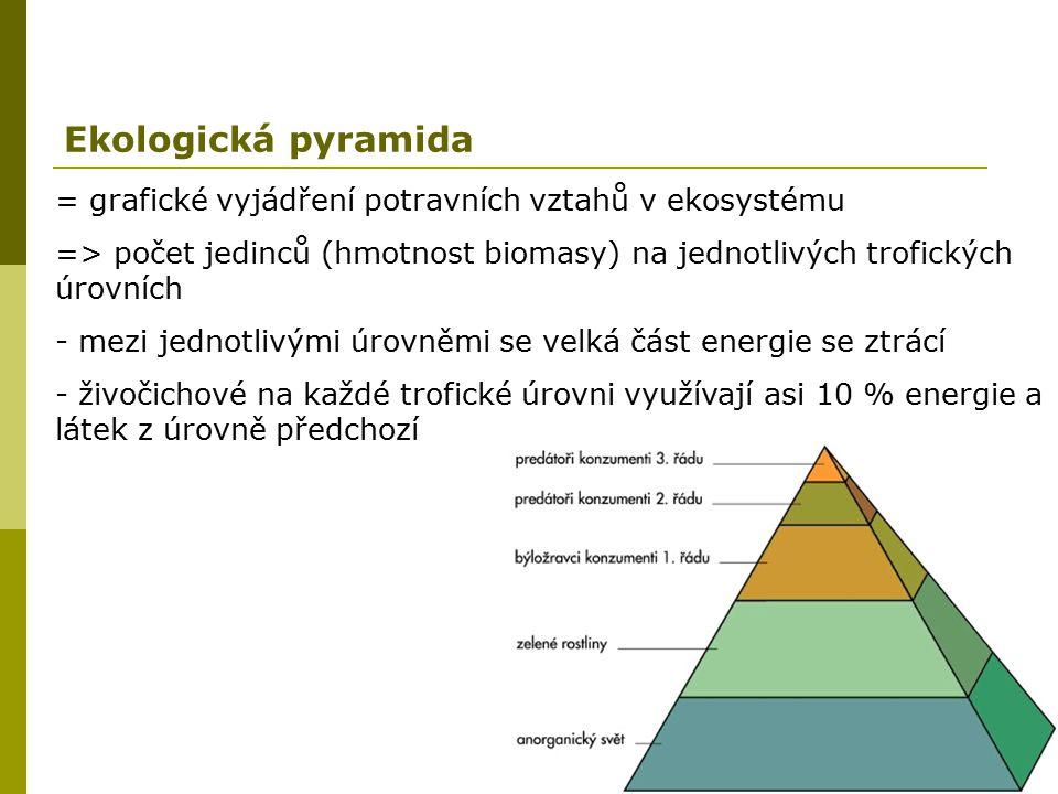 Ekologická pyramida = grafické vyjádření potravních vztahů v ekosystému => počet jedinců (hmotnost biomasy) na jednotlivých trofických úrovních - mezi