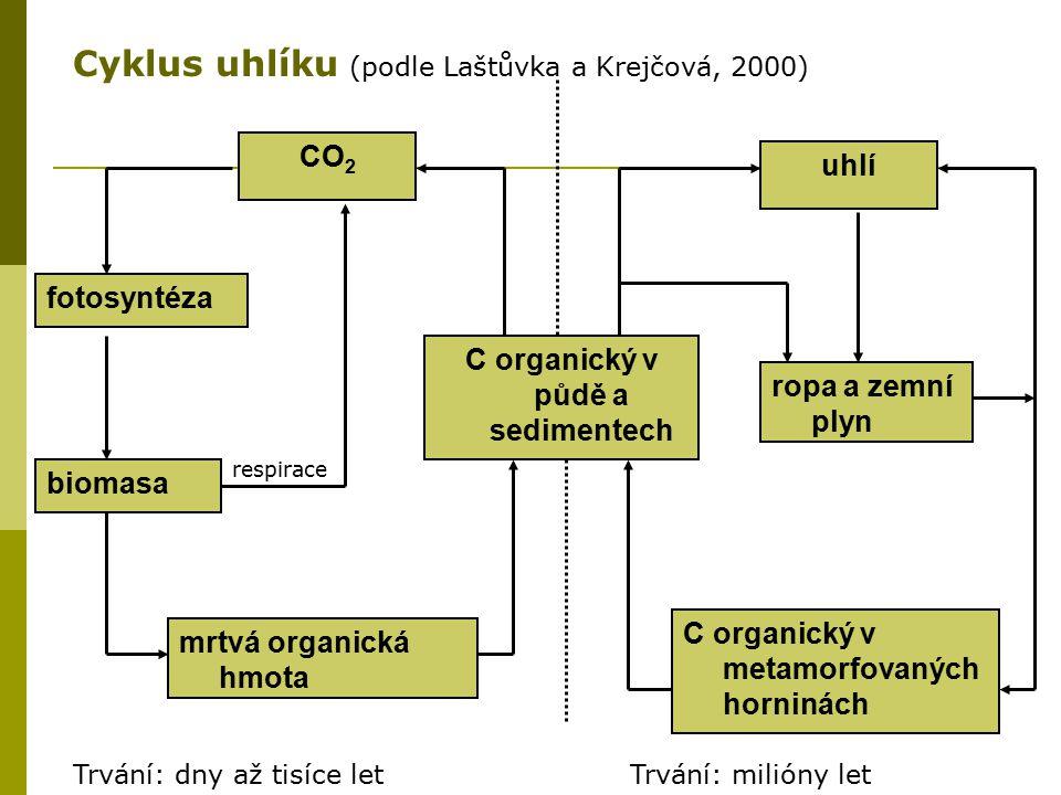 CO 2 fotosyntéza biomasa mrtvá organická hmota C organický v půdě a sedimentech respirace uhlí ropa a zemní plyn C organický v metamorfovaných horniná