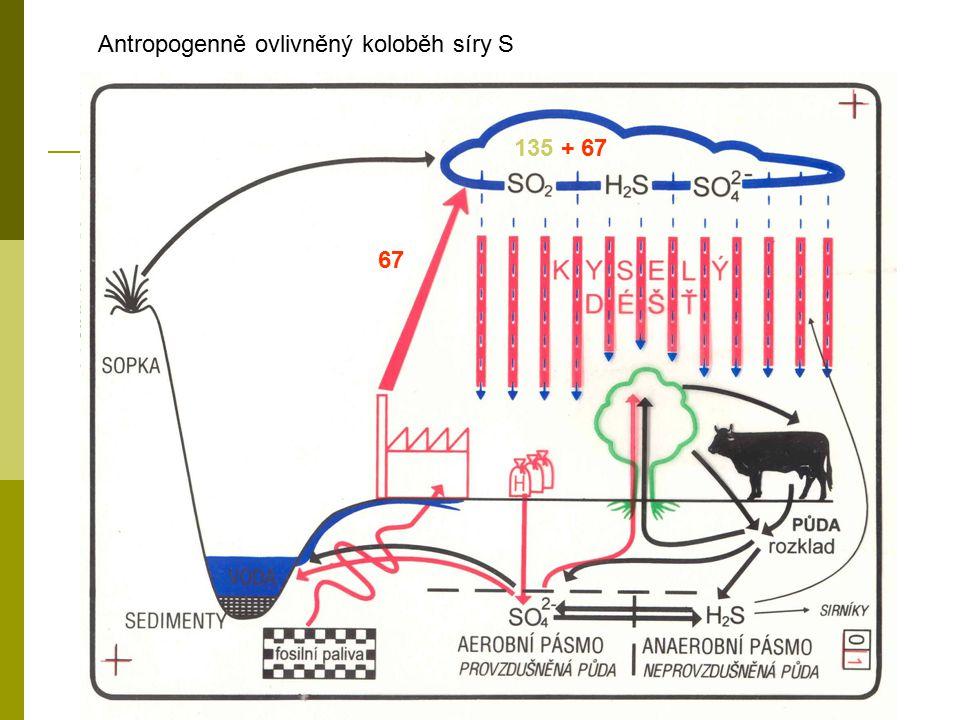 Antropogenně ovlivněný koloběh síry S 135 + 67 67