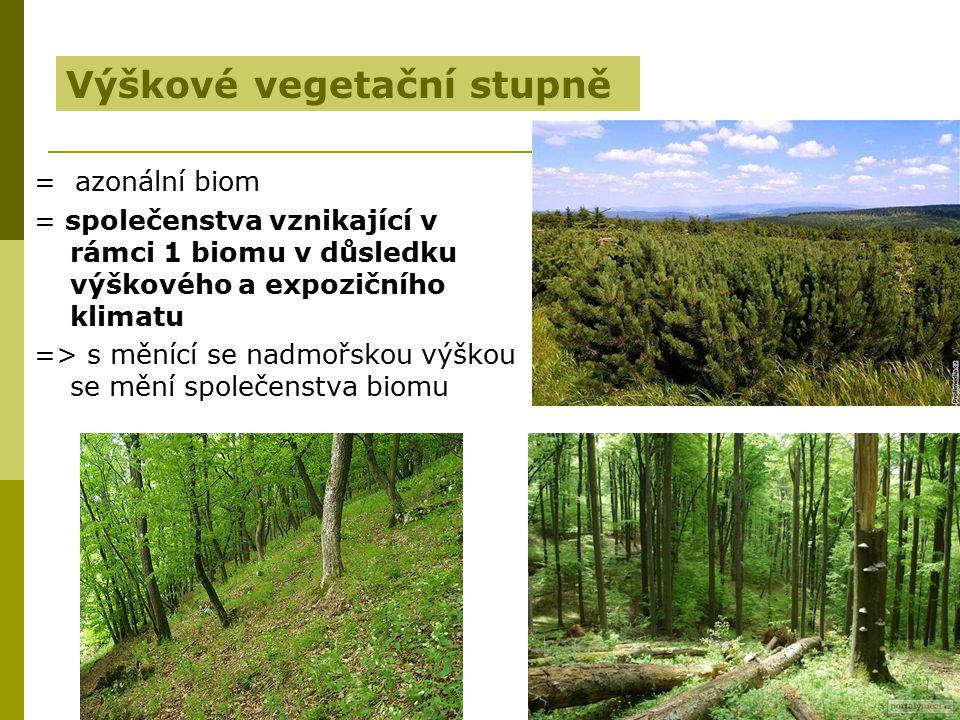= azonální biom = společenstva vznikající v rámci 1 biomu v důsledku výškového a expozičního klimatu => s měnící se nadmořskou výškou se mění společen