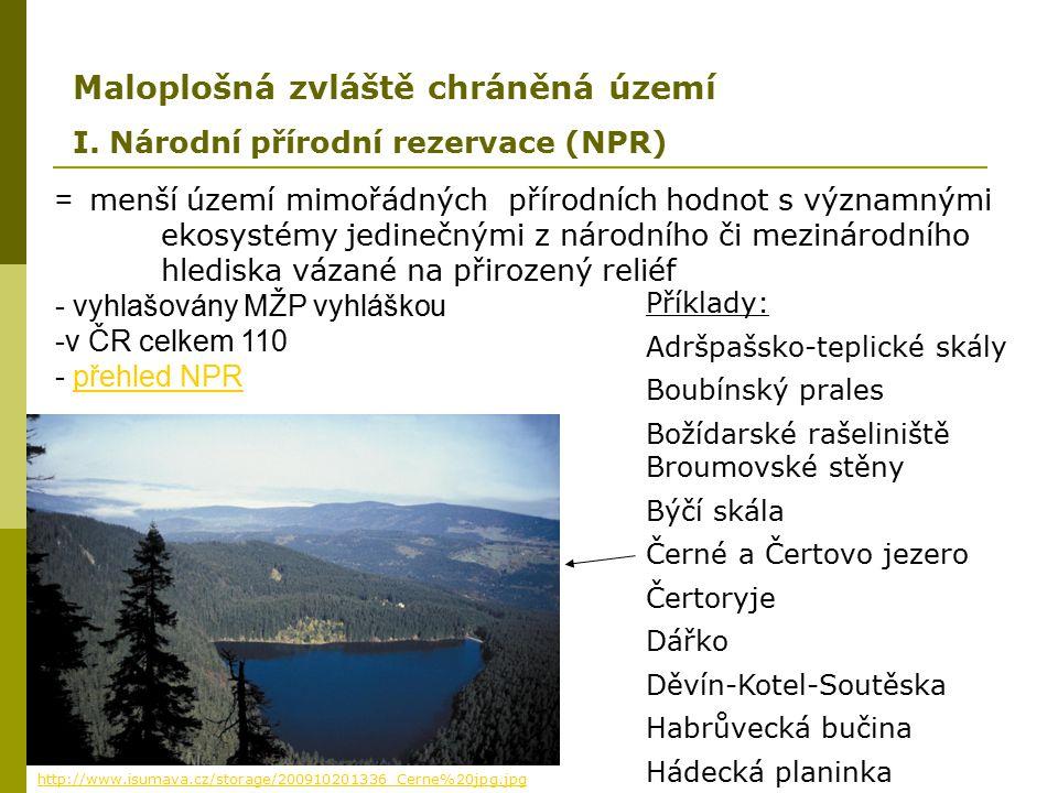 = menší území mimořádných přírodních hodnot s významnými ekosystémy jedinečnými z národního či mezinárodního hlediska vázané na přirozený reliéf - vyh