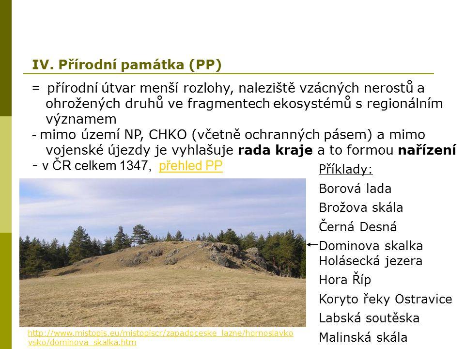 = přírodní útvar menší rozlohy, naleziště vzácných nerostů a ohrožených druhů ve fragmentech ekosystémů s regionálním významem - mimo území NP, CHKO (