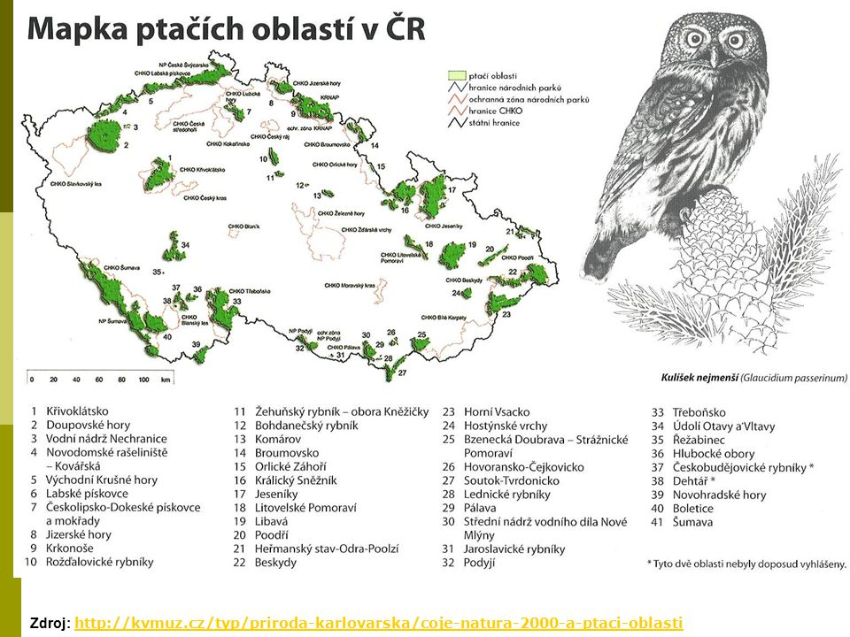 Zdroj: http://kvmuz.cz/typ/priroda-karlovarska/coje-natura-2000-a-ptaci-oblasti http://kvmuz.cz/typ/priroda-karlovarska/coje-natura-2000-a-ptaci-oblas