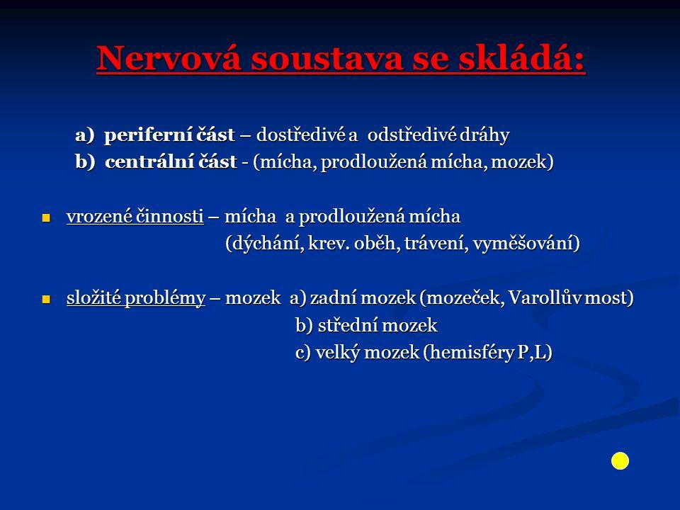 Nervová soustava se skládá: a) periferní část – dostředivé a odstředivé dráhy b) centrální část - (mícha, prodloužená mícha, mozek) b) centrální část