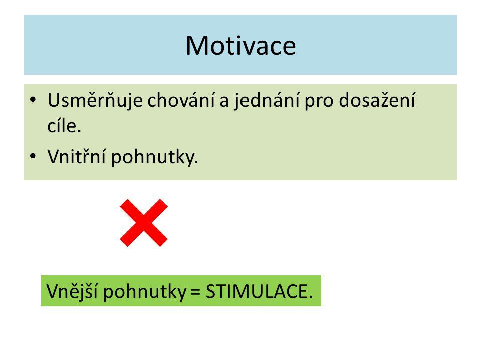 Motivace Usměrňuje chování a jednání pro dosažení cíle.