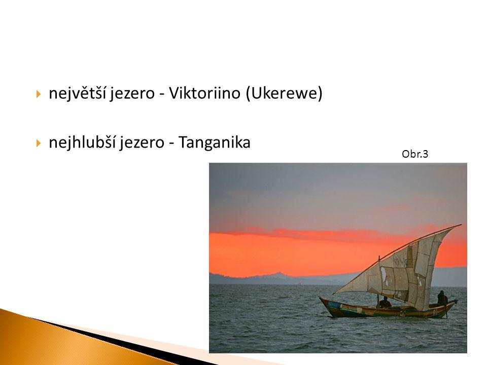  největší jezero - Viktoriino (Ukerewe)  nejhlubší jezero - Tanganika Obr.3