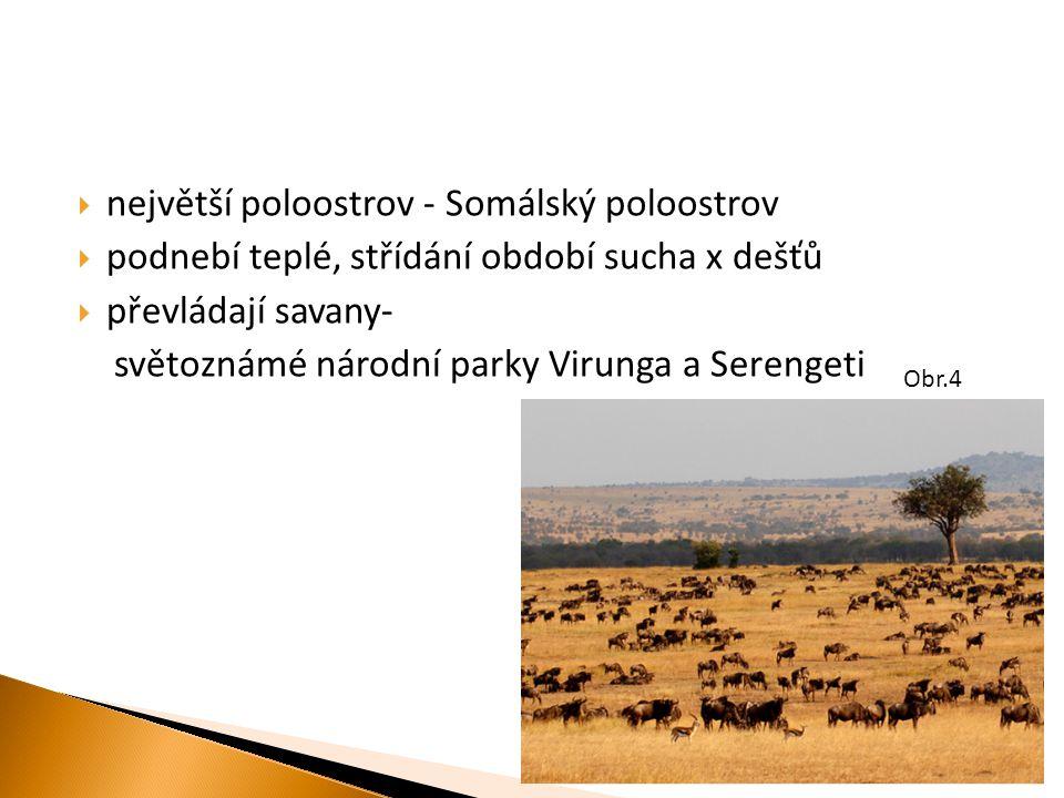  největší poloostrov - Somálský poloostrov  podnebí teplé, střídání období sucha x dešťů  převládají savany- světoznámé národní parky Virunga a Serengeti Obr.4