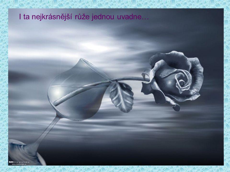 I ta nejkrásnější růže jednou uvadne…