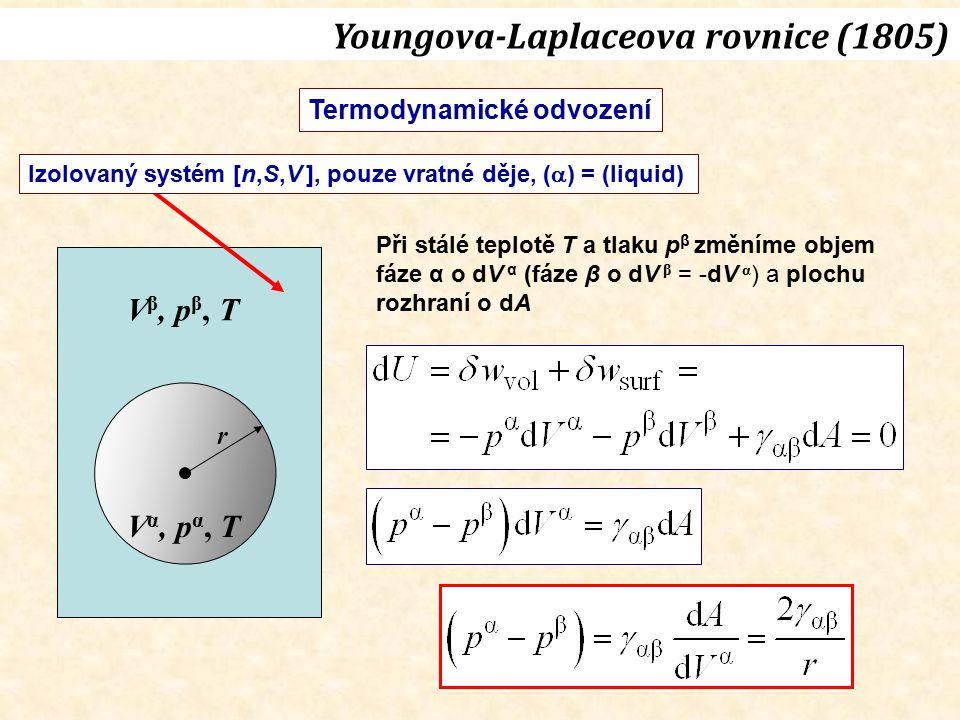V α, p α, T V β, p β, T r Izolovaný systém [n,S,V ], pouze vratné děje, (  ) = (liquid) Při stálé teplotě T a tlaku p β změníme objem fáze α o dV α (