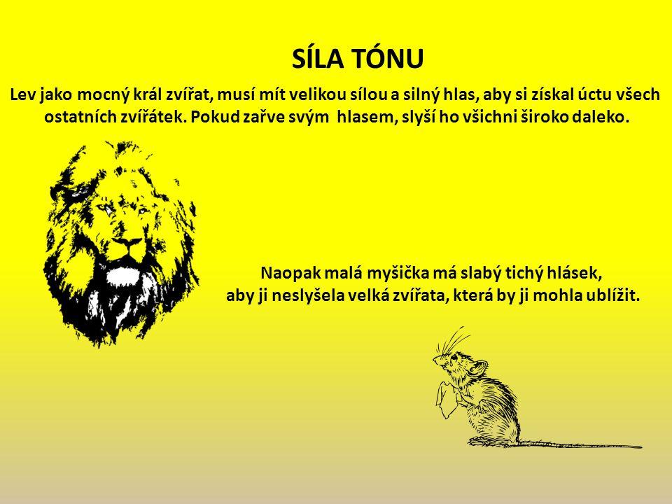 Lev jako mocný král zvířat, musí mít velikou sílou a silný hlas, aby si získal úctu všech ostatních zvířátek.