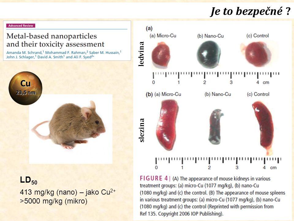 13 Je to bezpečné ? ledvina slezina Cu 23,5 nm LD 50 413 mg/kg (nano) – jako Cu 2+ >5000 mg/kg (mikro)
