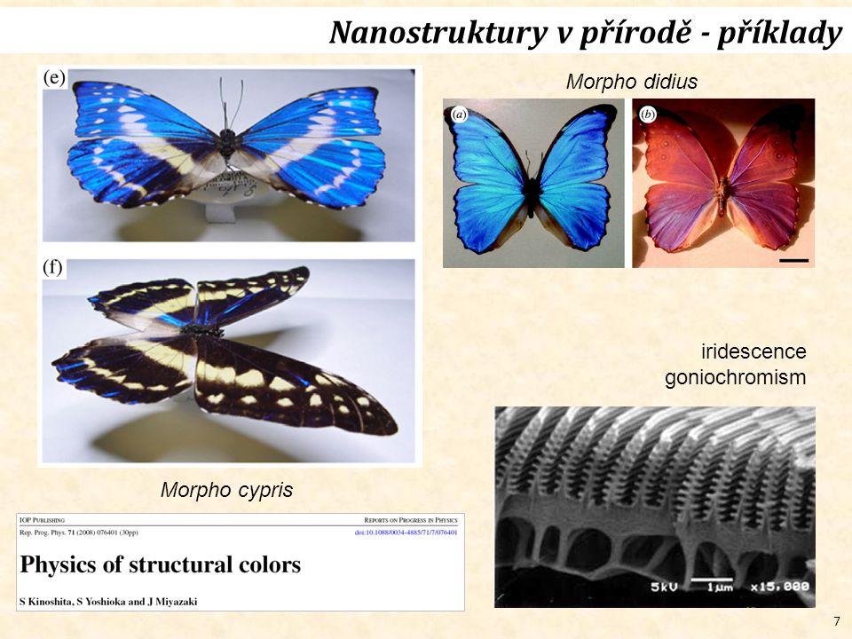 7 Nanostruktury v přírodě - příklady Morpho cypris Morpho didius iridescence goniochromism