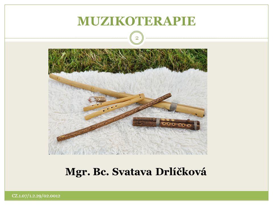 Seznam literatury Doporučená literatura MODR, A., Hudební nástroje.